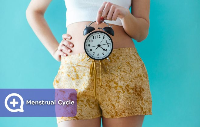 28-day basic menstrual cycle.. Menstruation, fertile days and ovulation. Phases.