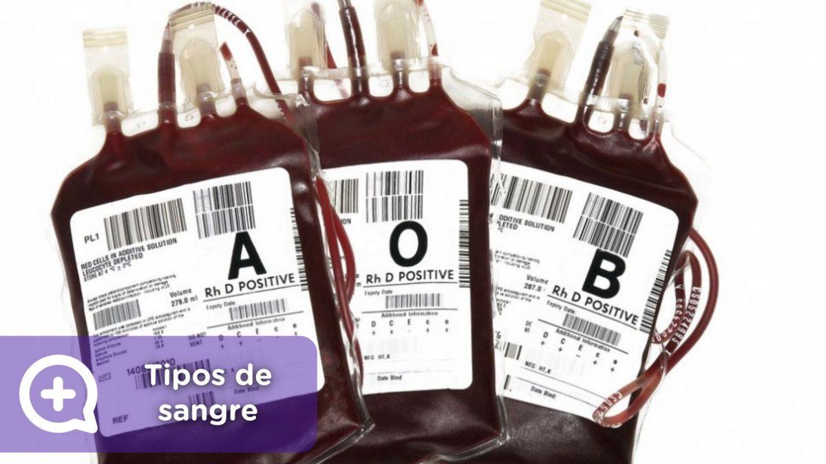 Tipos de sangre, donación, AB0. Rh. Mediquo. Tu amigo médico. Chat médico.