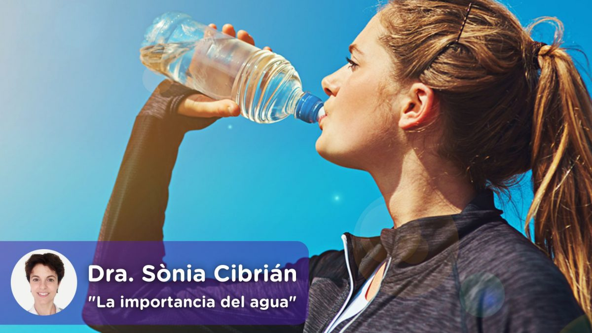 La importancia del agua en el ser humano. Mediquo, tu amigo médico. Chat médico. Sònia Cibrián