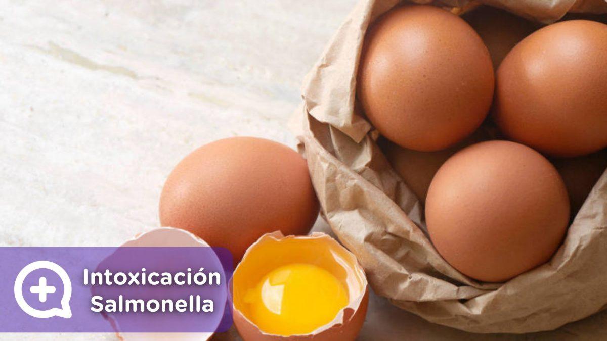 Intoxicación alimentaria por salmonella. Salmonelosis. Deshidratación. Huevo. Mediquo. Tu amigo médico. Chat médico.