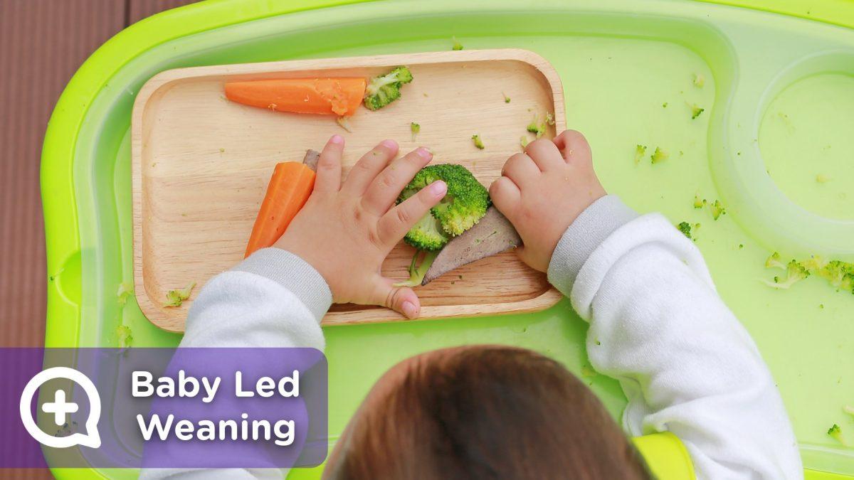 Baby Led Weaning. Alimentación en niños. Nutrición. Salud. Pediatría. Mediquo, Tu amigo médico. Chat médico.
