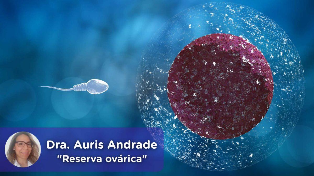 Reserva ovárica, Auris Andrade. Ginecología. Mediquo. Tu amigo médico. Chat médico.