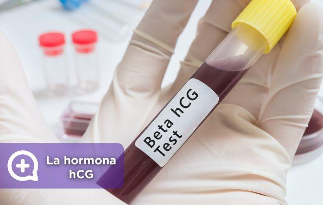 Hormona embarazo HCG_mediquo