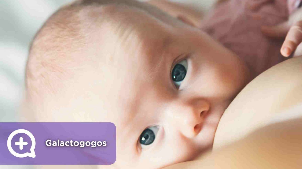 Galactogogos: fármacos para aumentar la producción de leche materna. Lactancia. Mediquo. Salud.