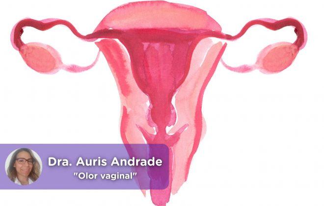 Olor vaginal, menstruación, pescado, flujo vaginal, salud mujer, vagina. MediQuo, Auris Andrade, médico, cirujano, ginecología, salud, telemedicina