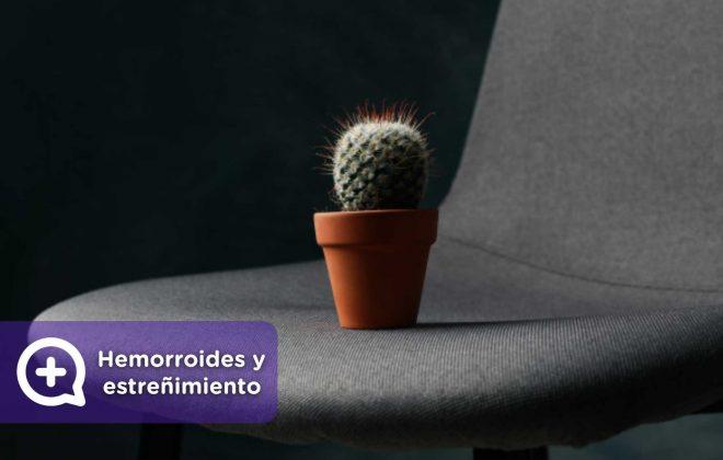 Hemorroides, almorranas, venas, estreñimiento. MediQuo, tu amigo médico, chat médico.