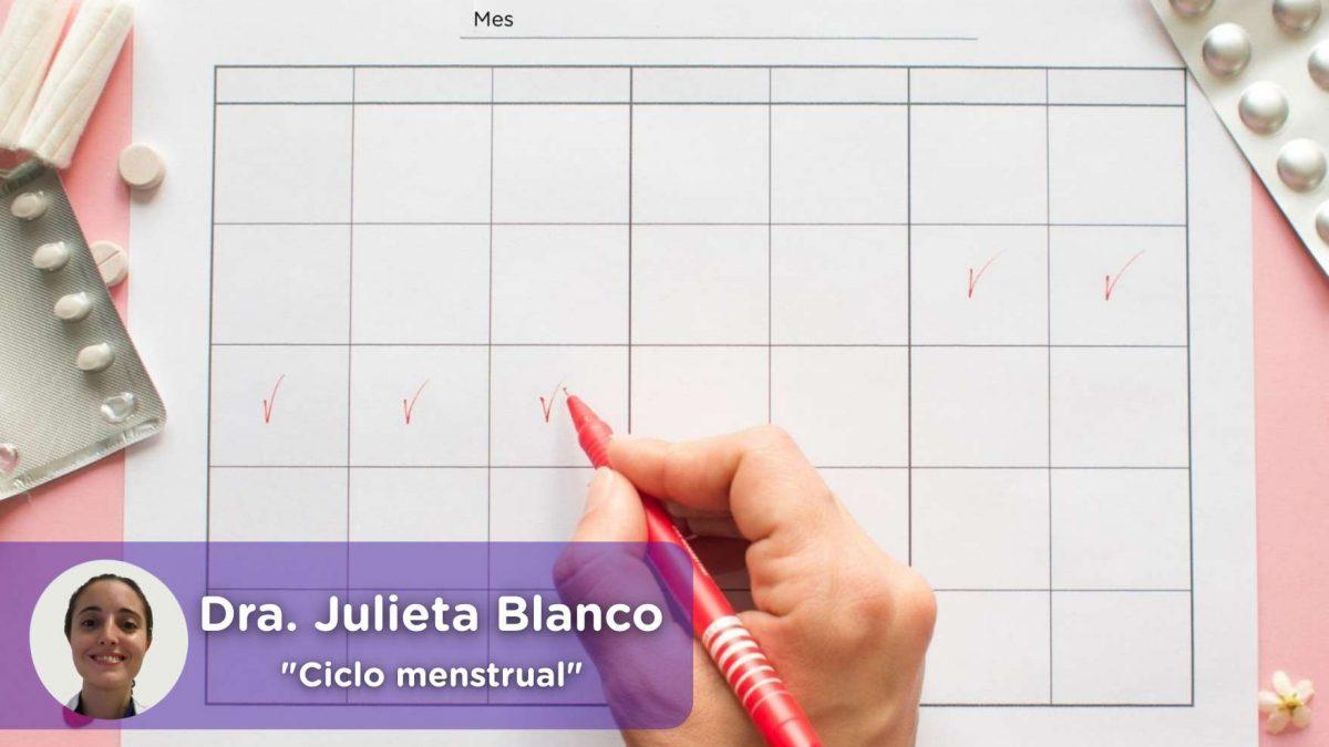 ciclo menstrual, menarquía, regla, menstruación, menopausia, ginecología, salud, mediquo