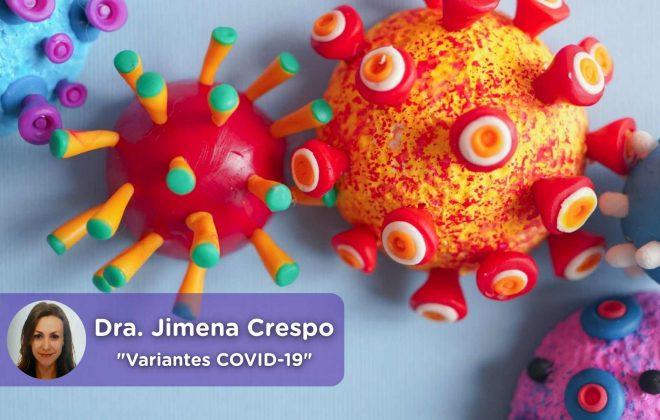 Variantes do vírus Covid19, britânico, sul-africano, brasileiro, saúde, médico, chat médico