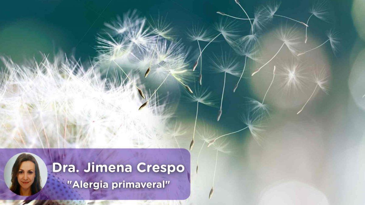 alergia primaveral, recomendaciones, ácaros, polvos, antihistamínicos, mediquo, salud, alergología