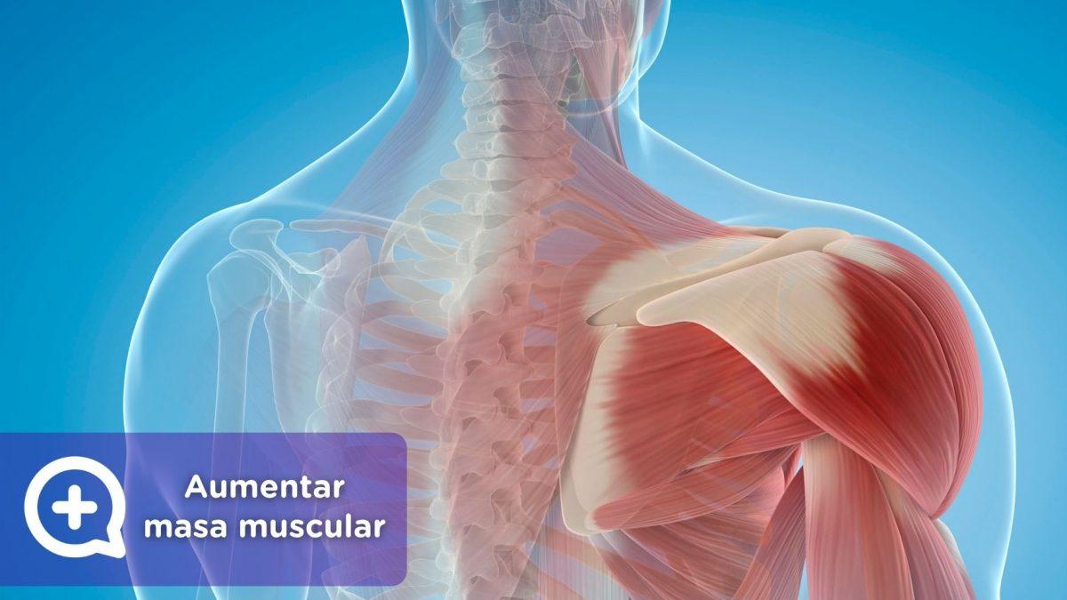 Aumentar masa muscular_mediQuo